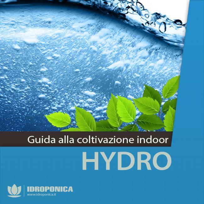 Guida alla Coltivazione Indoor - Idroponica
