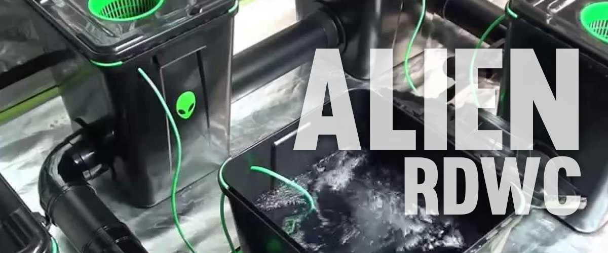 Alien Pro RDWC sistema idroponico