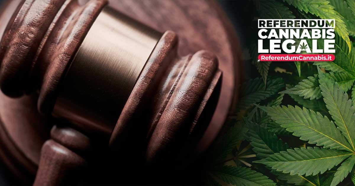 Legalizzazione Cannabis - Raggiunto il quorum di 500mila firme