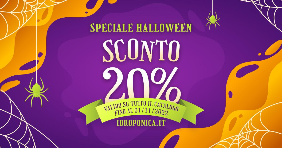 Le 7 Verdure facili da coltivare Indoor