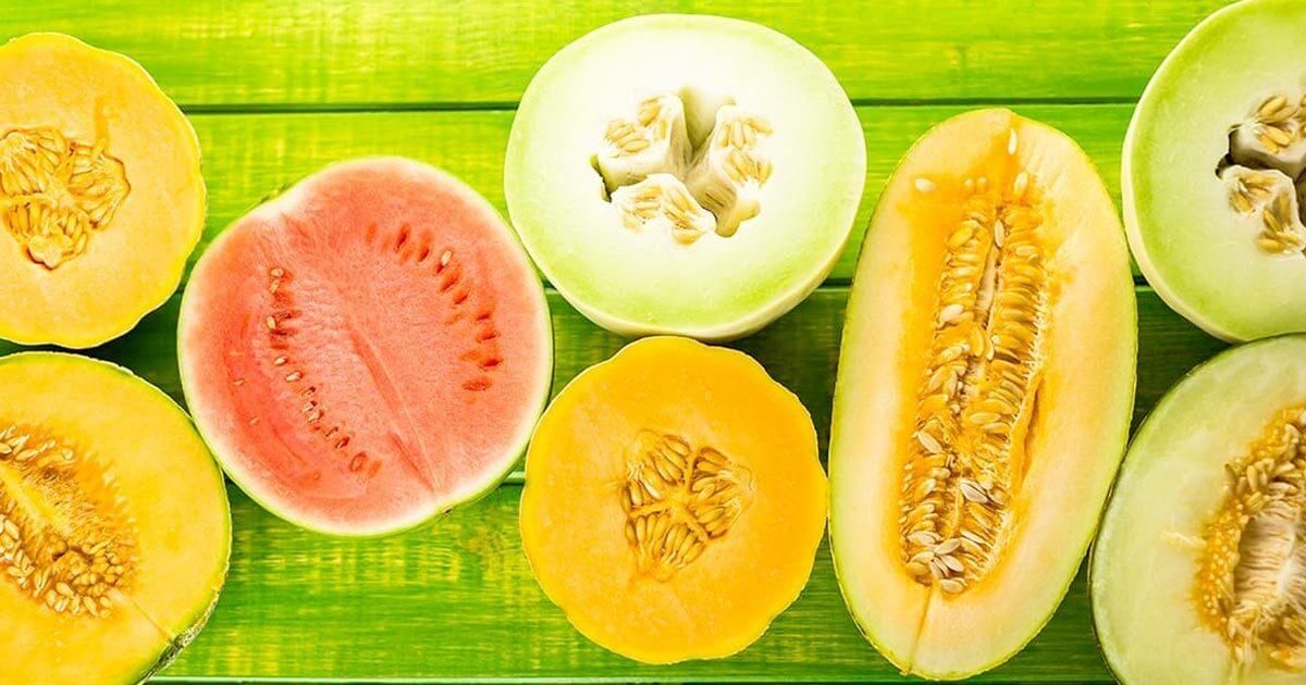 Come Coltivare il melone e l'anguria: Manuale Completo - Idroponica.it
