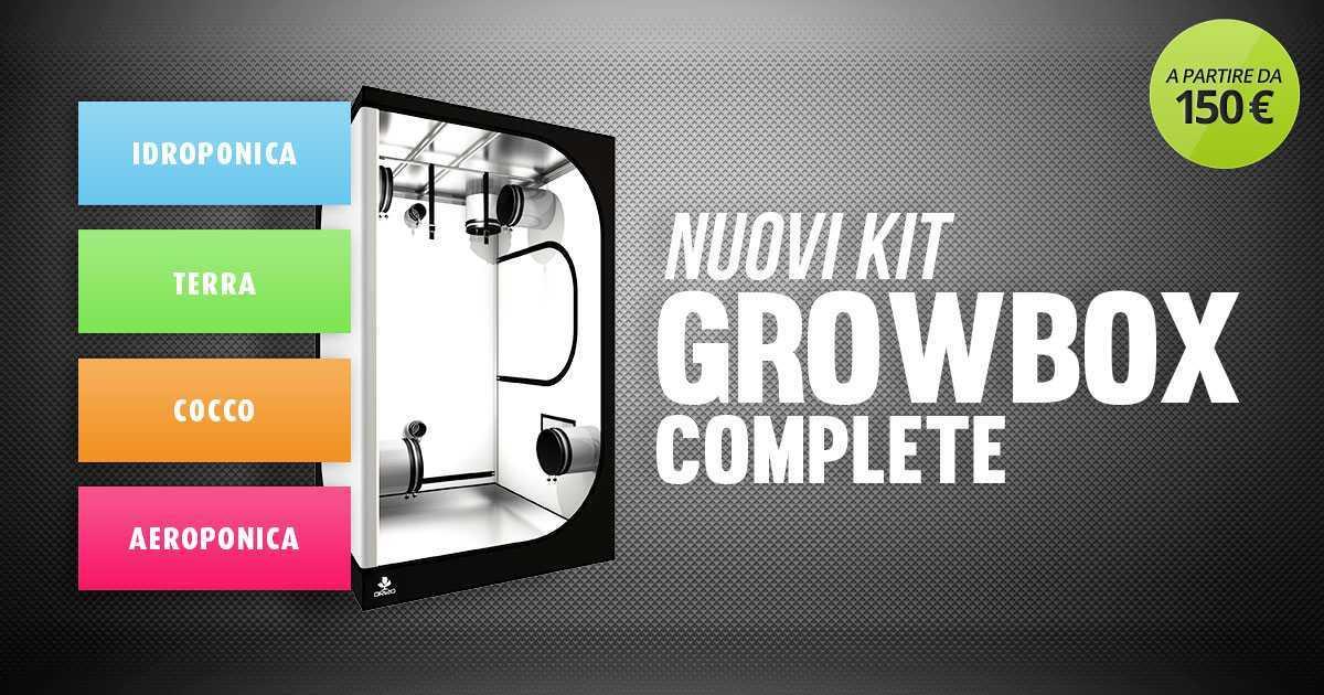 Nuovi Kit di Coltivazione con Grow Box Allestita