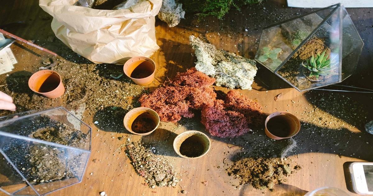 Come Fare i Fertilizzante Naturali a Casa? Guida - Idroponica.it
