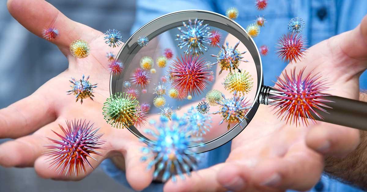 Come rimuovere Odori, Muffe e Batteri con gli Ozonizzatori