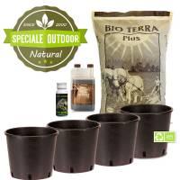 Speciale Outdoor: Kit Autofiorenti Bio (4 piante)